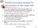 selfish investment strategy 1 the incentive to take large risks