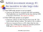selfish investment strategy 1 the incentive to take large risks1