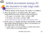 selfish investment strategy 1 the incentive to take large risks2