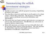 summarizing the selfish investment strategies