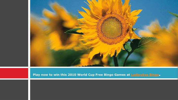 Play now to win this 2010 world cup free bingo games at ladbrokes bingo