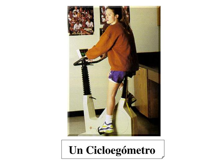 Un Cicloegómetro