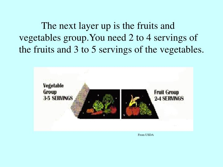 The next layer up is the fruits and vegetables group.You need 2 to 4 servings of the fruits and 3 to 5 servings of the vegetables.