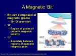 a magnetic bit