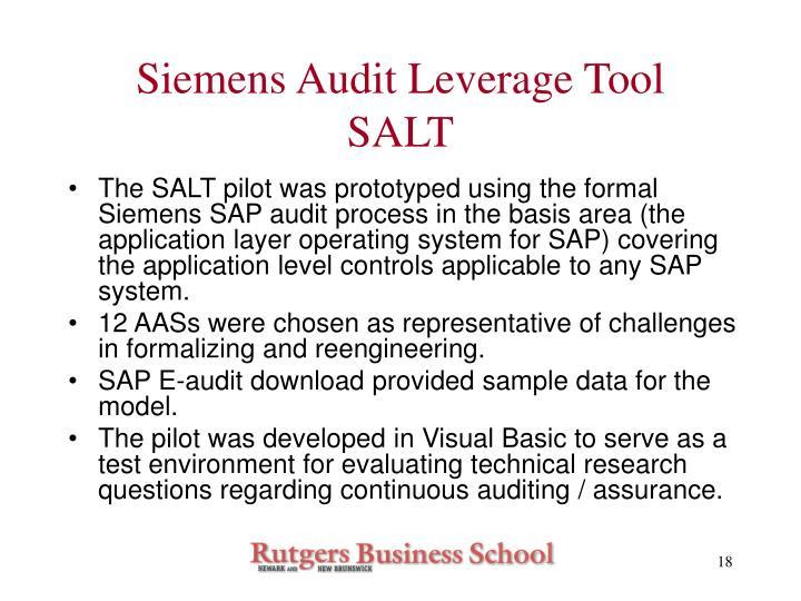 Siemens Audit Leverage Tool