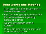 buzz words and theories1