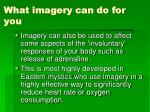 what imagery can do for you2