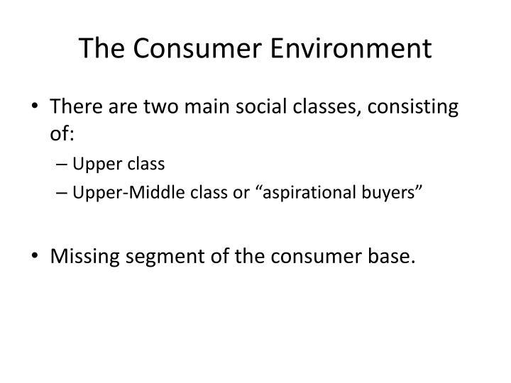 The Consumer Environment