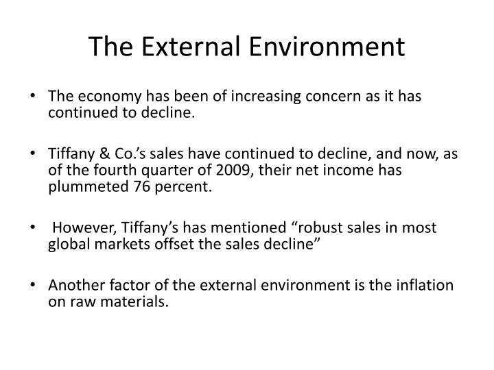 The External Environment