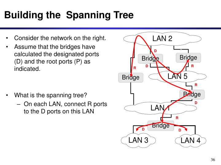 Building the  Spanning Tree
