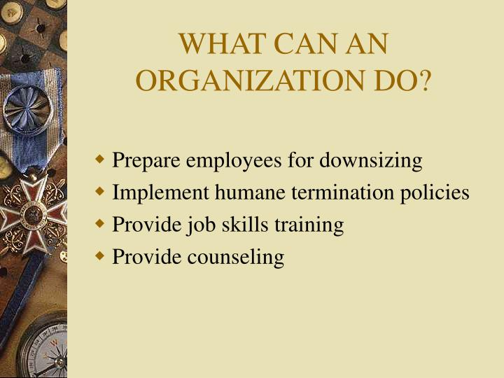 WHAT CAN AN ORGANIZATION DO?