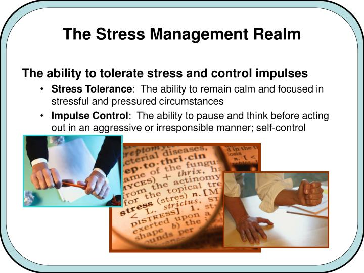 The Stress Management Realm