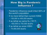 how big is pandemic influenza