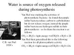 water is source of oxygen released during photosynthesis