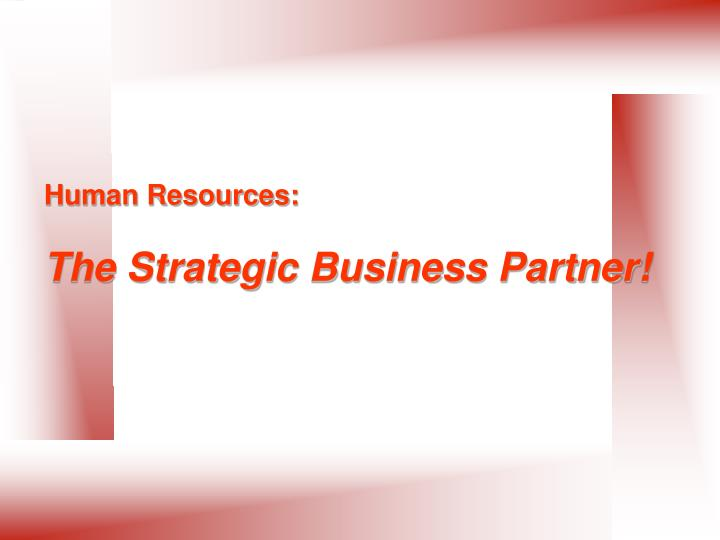 human resources the strategic business partner n.