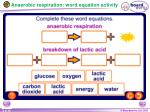 anaerobic respiration word equation activity