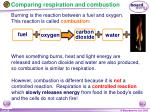 comparing respiration and combustion