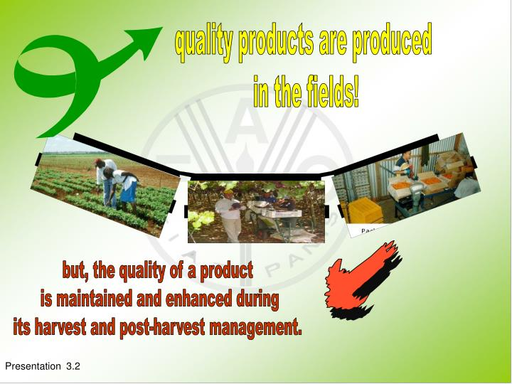 Quality products are produced