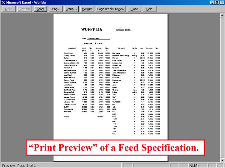 """""""Print Preview"""" of a Feed Specification."""
