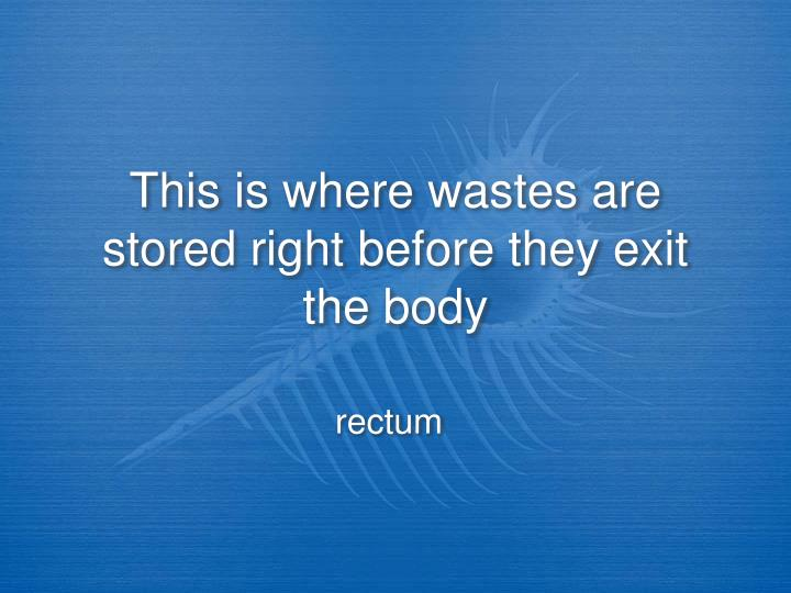 This is where wastes are stored right before they exit the body