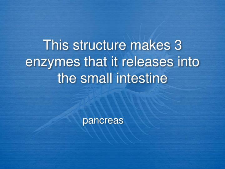 This structure makes 3 enzymes that it releases into the small intestine