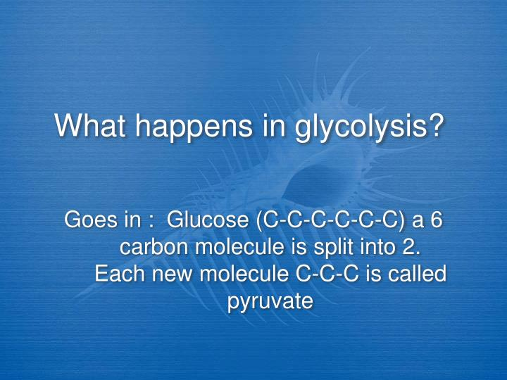 What happens in glycolysis?