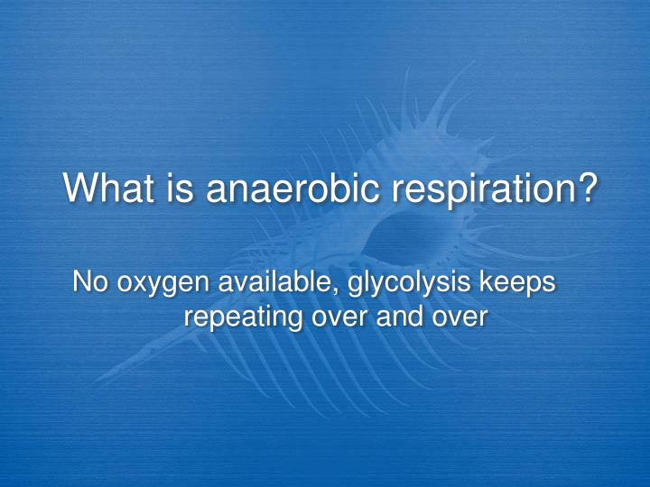What is anaerobic respiration?