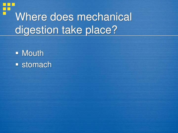 Where does mechanical digestion take place?