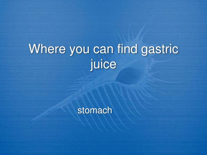 Where you can find gastric juice