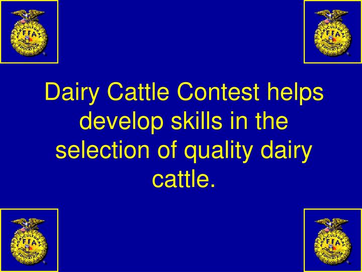 Dairy Cattle Contest helps develop skills in the selection of quality dairy cattle.
