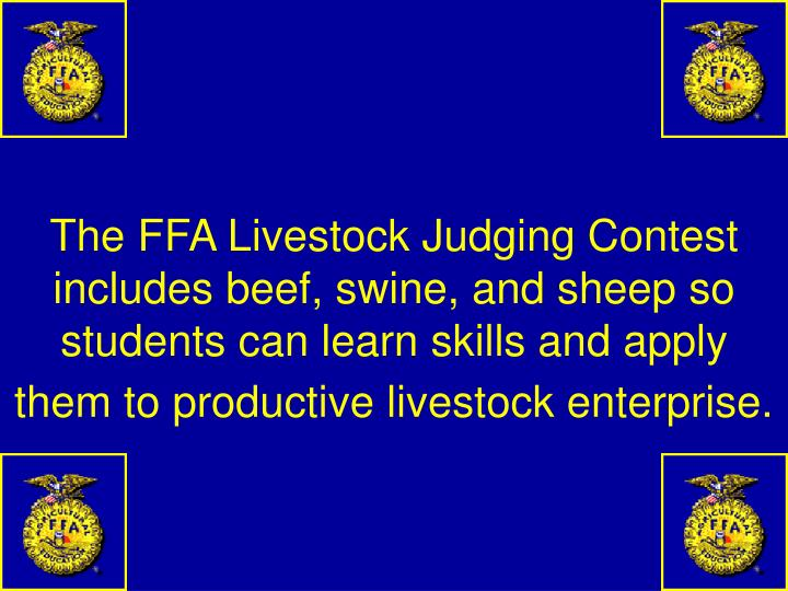 The FFA Livestock Judging Contest includes beef, swine, and sheep so students can learn skills and apply them to productive livestock enterprise.