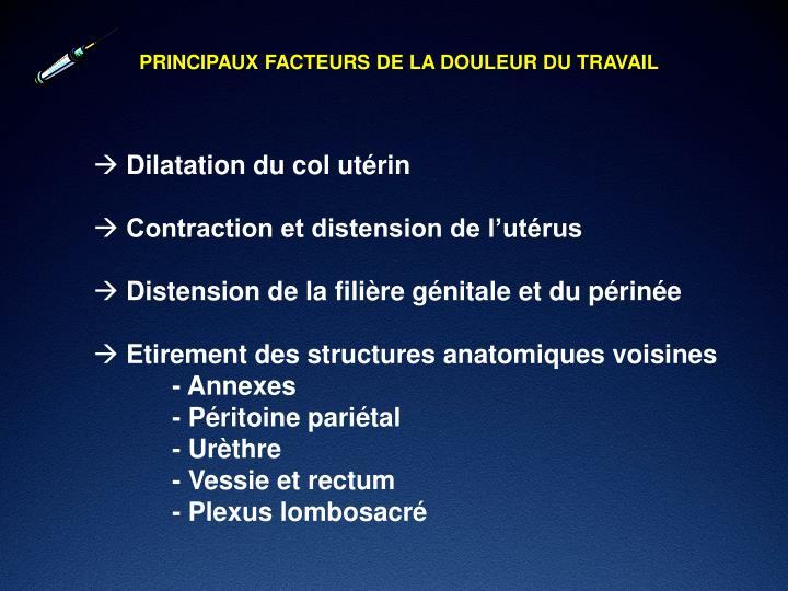 PRINCIPAUX FACTEURS DE LA DOULEUR DU TRAVAIL