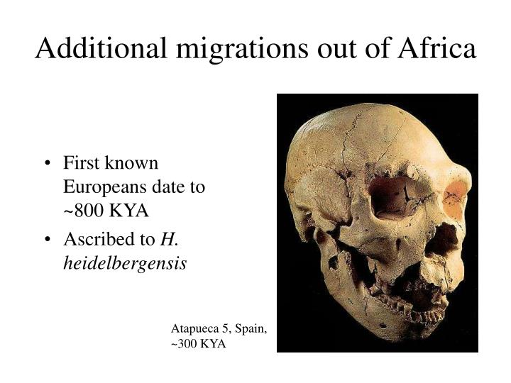 Additional migrations out of Africa
