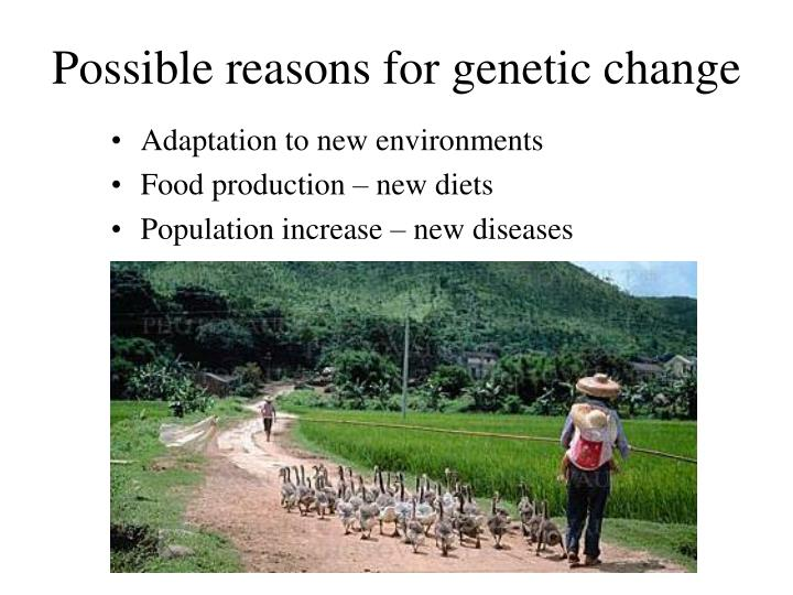 Possible reasons for genetic change