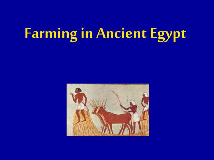 farming in ancient egypt n.