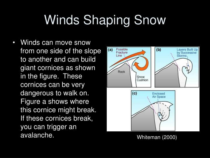 Winds Shaping Snow