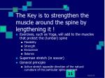 the key is to strengthen the muscle around the spine by lengthening it