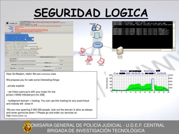 SEGURIDAD LOGICA