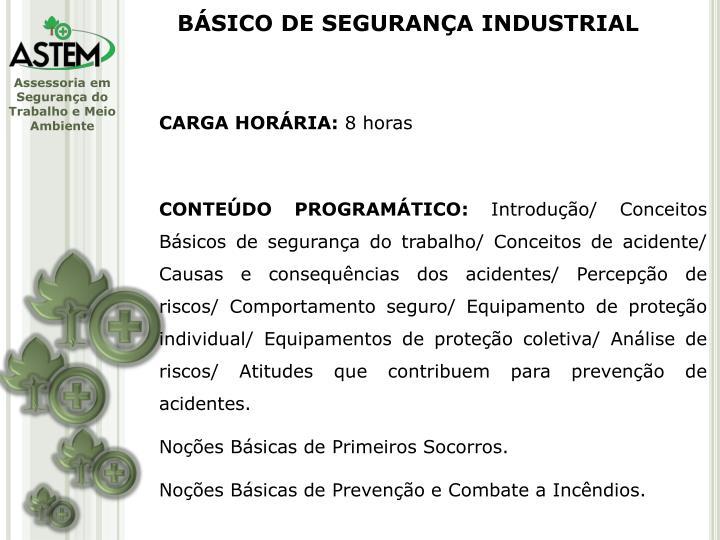 BÁSICO DE SEGURANÇA INDUSTRIAL