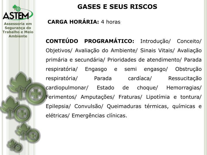 GASES E SEUS RISCOS