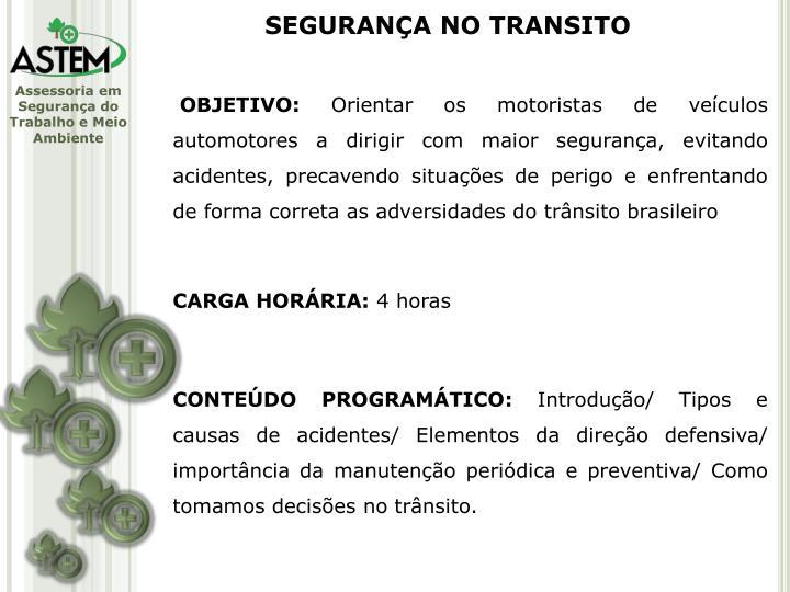 SEGURANÇA NO TRANSITO