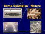 some examples nature