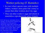 worker policing f ratnieks