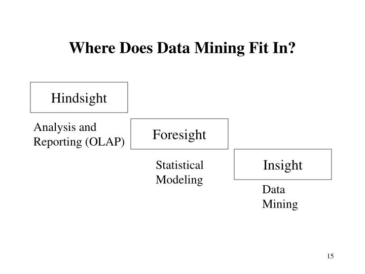 Where Does Data Mining Fit In?