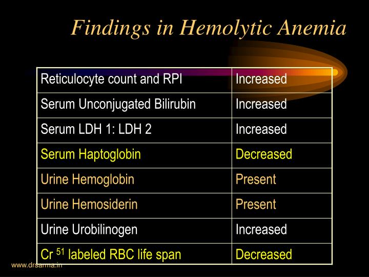 Findings in Hemolytic Anemia