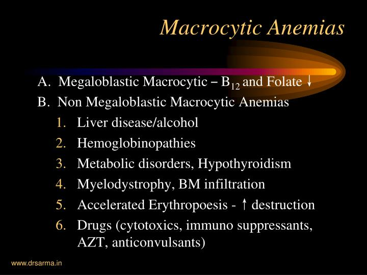 A.  Megaloblastic Macrocytic