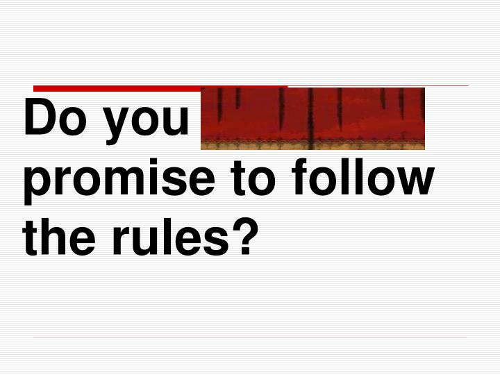 Do you solemnly promise to follow the rules?