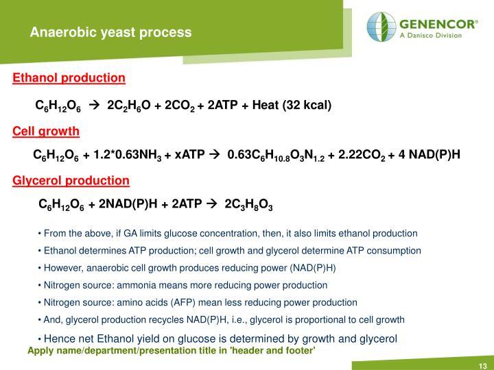 Anaerobic yeast process