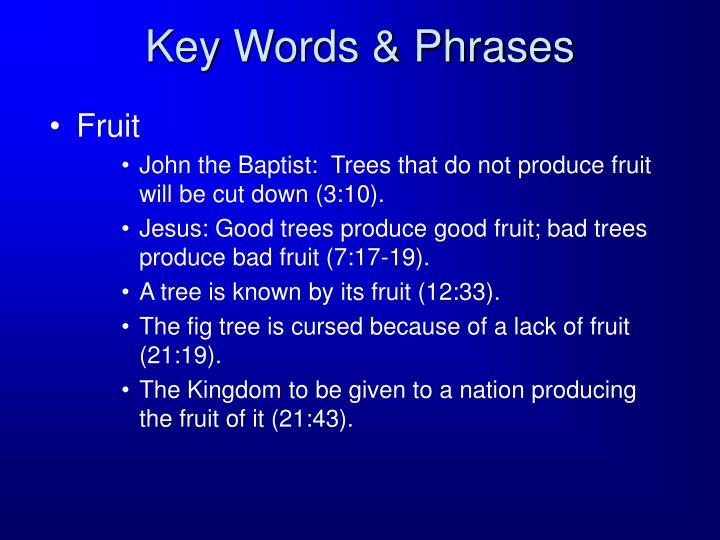 Key Words & Phrases