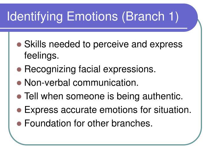 Identifying Emotions (Branch 1)